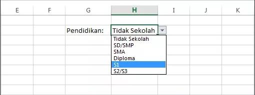 Cara Mudah Membuat Dropdown List di Excel   IT-Jurnal.com
